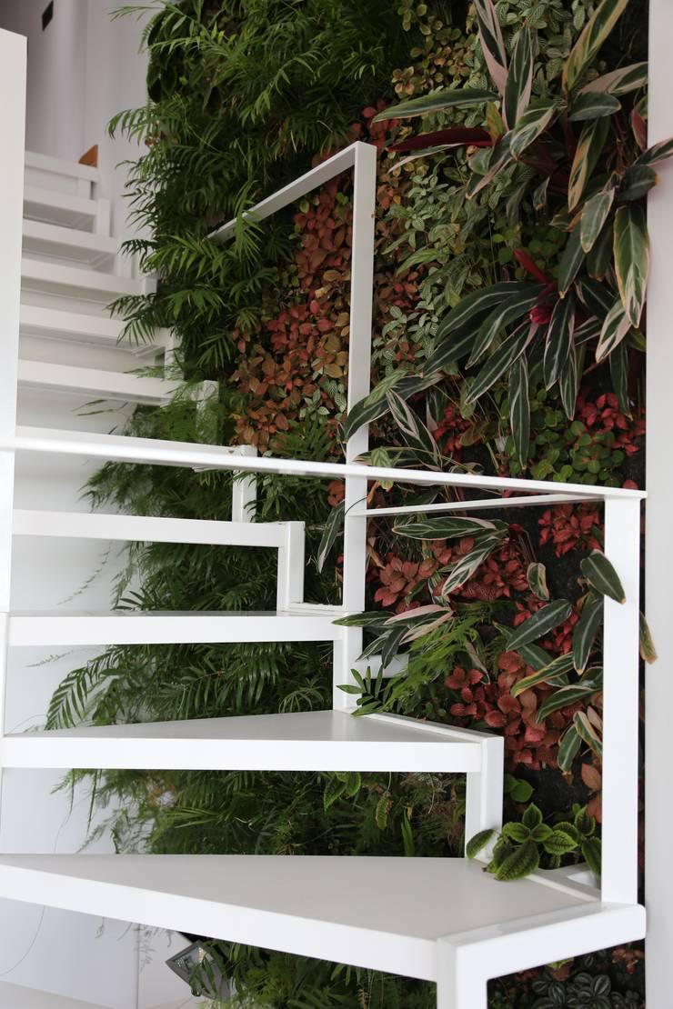 Apartamento Privado (Duplex) Zona do Lumiar/Lisboa – Portugal: Jardins  por LC Vertical Gardens