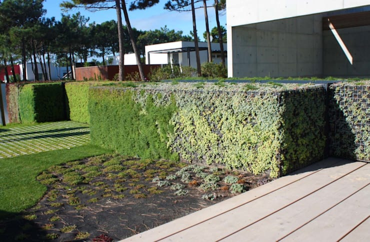 Moradia * Quinta da Marinha: Jardim  por LC Vertical Gardens