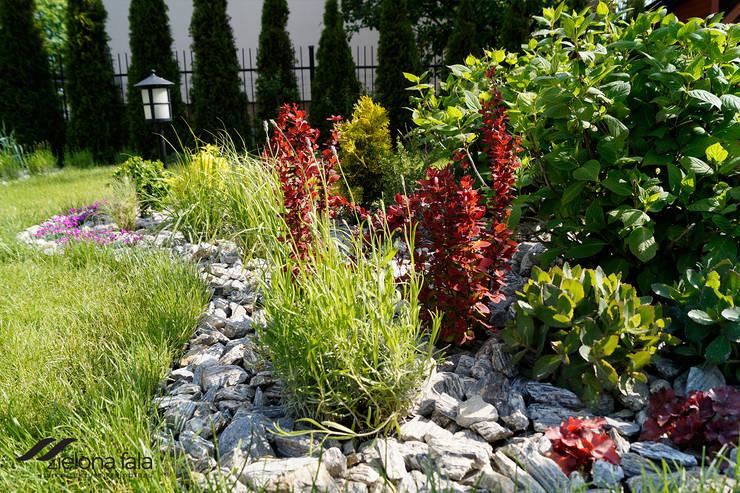 Trawnik, żywopłot i ogród: styl , w kategorii  zaprojektowany przez Zielona Fala,