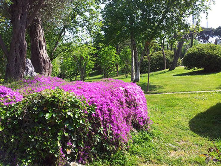 Сады в . Автор – Land Design Factory