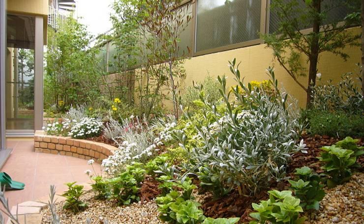 GAZON~ガゾン~의  정원