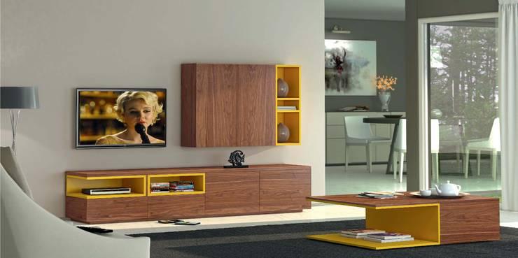 Mobiliário de salas de estar Furniture for living rooms www.intense-mobiliario.com  Astro http://intense-mobiliario.com/product.php?id_product=3598: Sala de estar  por Intense mobiliário e interiores;