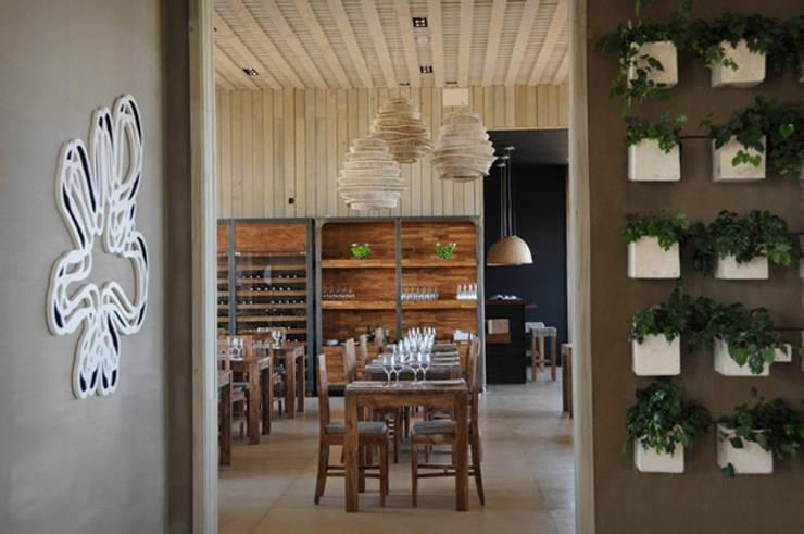 PROYECTO + BH1657: Pasillos, vestíbulos y escaleras  de estilo  por Estudio Susana Villaverde