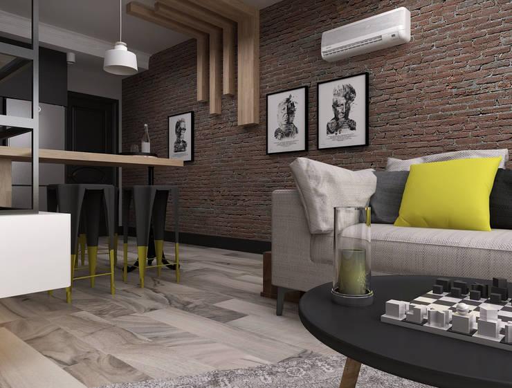 Ceren Torun Yiğit  – Stüdyo Daire Tasarımı:  tarz Oturma Odası, Minimalist