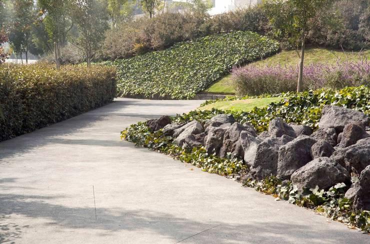 Lomas del Pedregal: Jardines de estilo  por Ambiente Arquitectos Asociados, S.A de C.V.