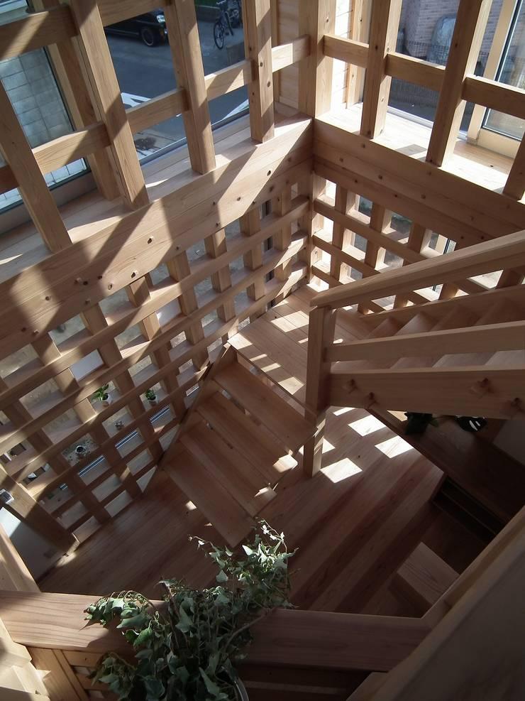 光格子の家 モダンスタイルの 玄関&廊下&階段 の 木の家づくりを応援する木住研 モダン