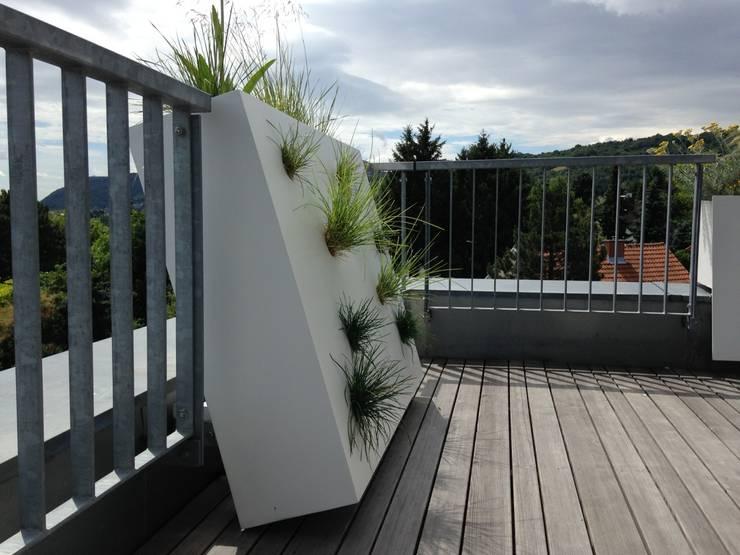 Balcones, porches y terrazas de estilo  por neubert und fuchs_gartenabteilung