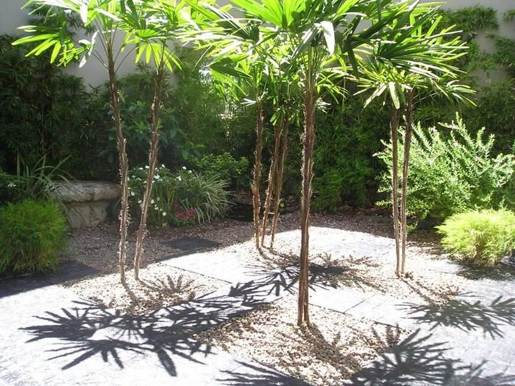 Jardin Welker: Jardines de estilo moderno por Dhena CONSTRUCCION DE JARDINES