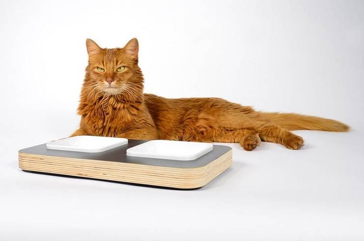 stylecats Futternapfbar - eckig anthrazit:  Haushalt von stylecats®