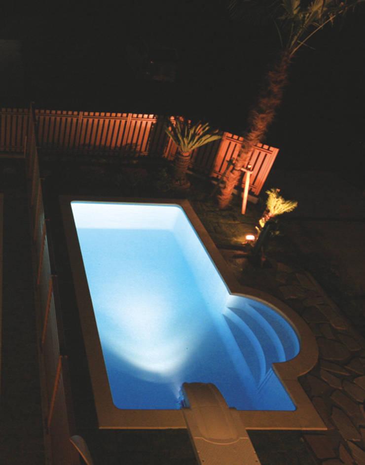 プールのある家 シーン07: PROSPERDESIGN ARCHITECT OFFICE/プロスパーデザインが手掛けたプールです。