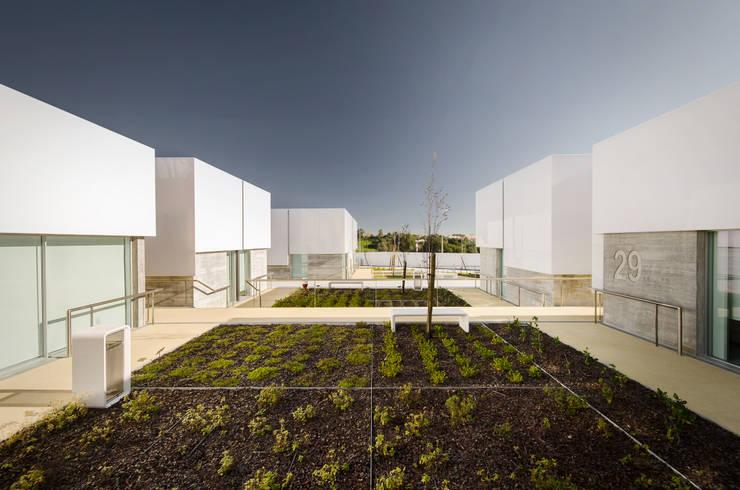 Vista Exterior: Jardins  por guedes cruz arquitectos