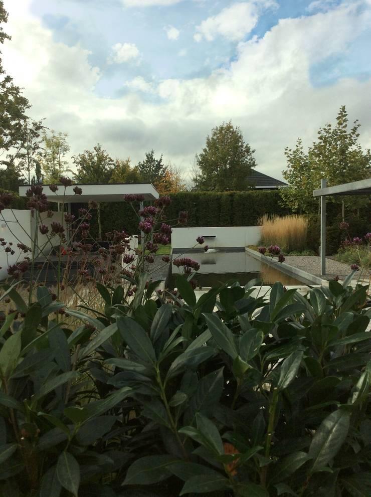 Impostante vijver:  Tuin door Stoop Tuinen, Modern