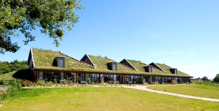 Voorzijde:  Huizen door stripesarchitects