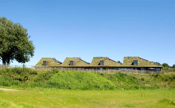 Groene hellingen:  Huizen door stripesarchitects