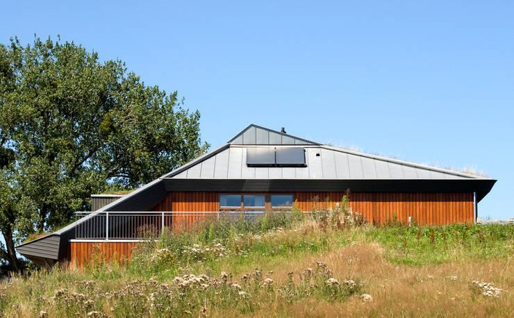 Kopgevel:  Huizen door stripesarchitects