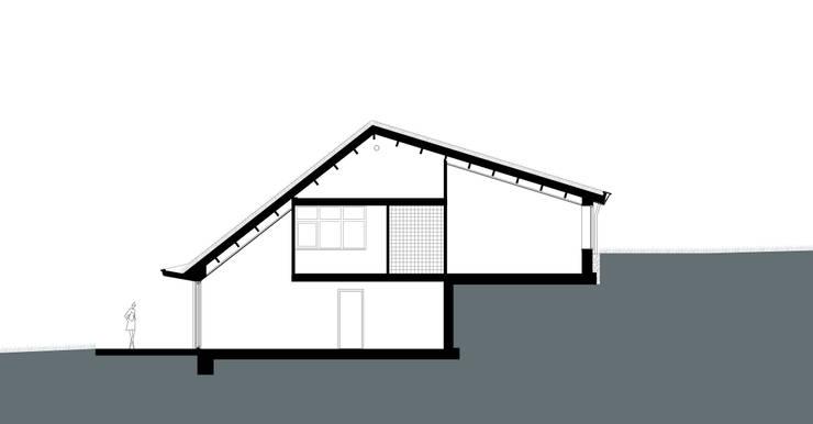 Doorsnede:  Huizen door stripesarchitects