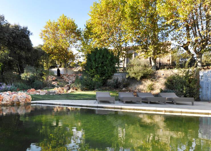 piscine naturelle: Piscines  de style  par goodnova godiniaux