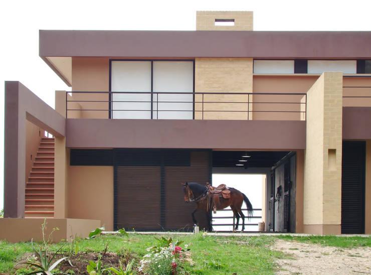 Casa del Patio Ecuestre: Pasillos y vestíbulos de estilo  por David Macias Arquitectura & Urbanismo