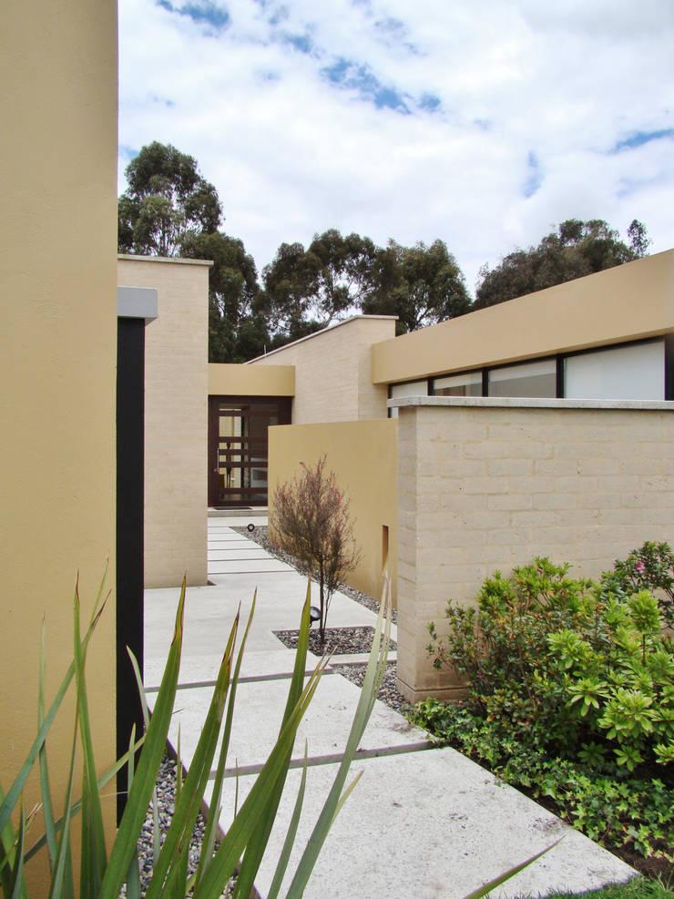 Casa H: Jardines de estilo  por David Macias Arquitectura & Urbanismo