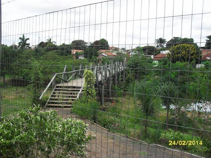 Ponte de madeira tratada:   por SN Engenharia