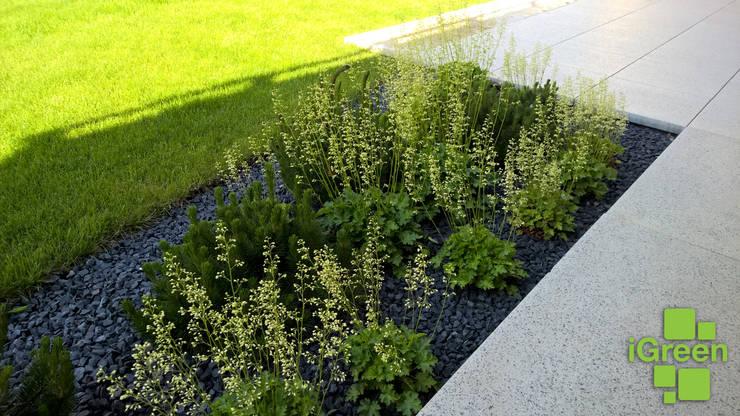 Nasadzenia roślinne.: styl , w kategorii  zaprojektowany przez IGREEN Architektura Krajobrazu i Miejskie Formy