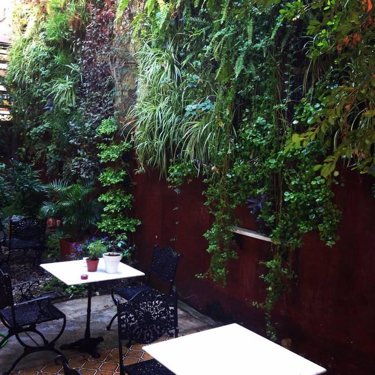 Interior de estudio: Jardines de estilo  por jardines verticales,