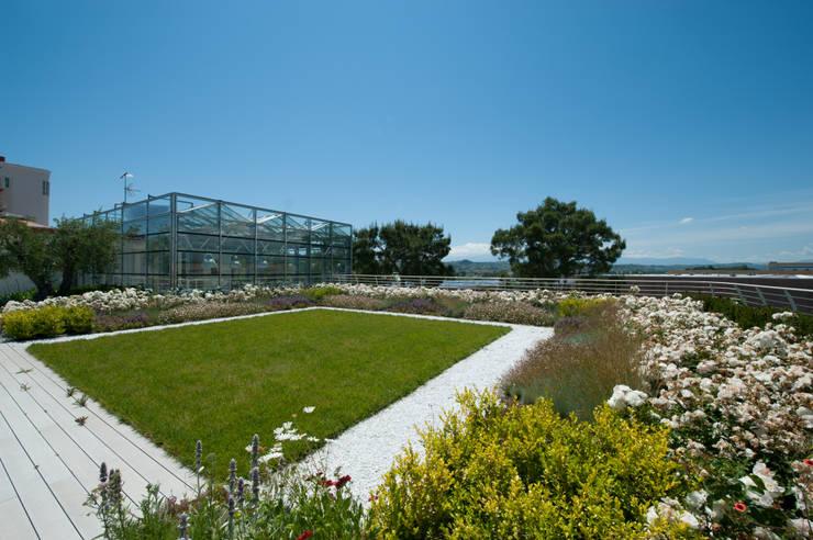 Giardino Pensile Intensivo Semplice:  in stile  di Febo Garden landscape designers