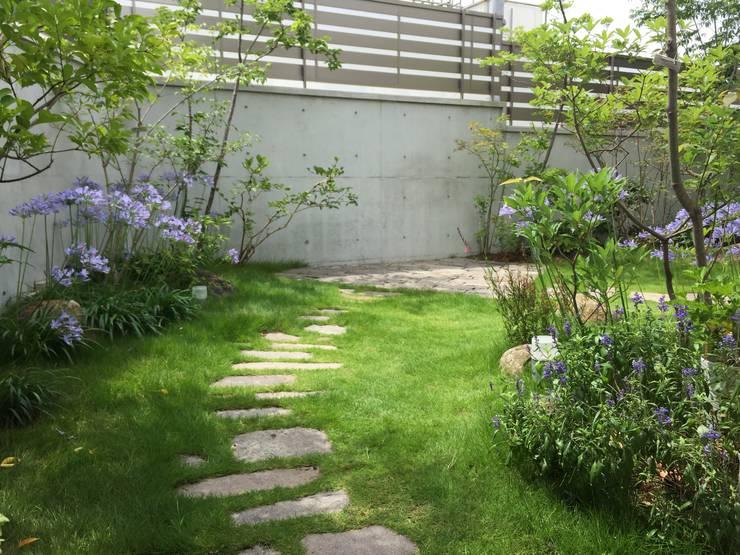 Сады в . Автор – eni
