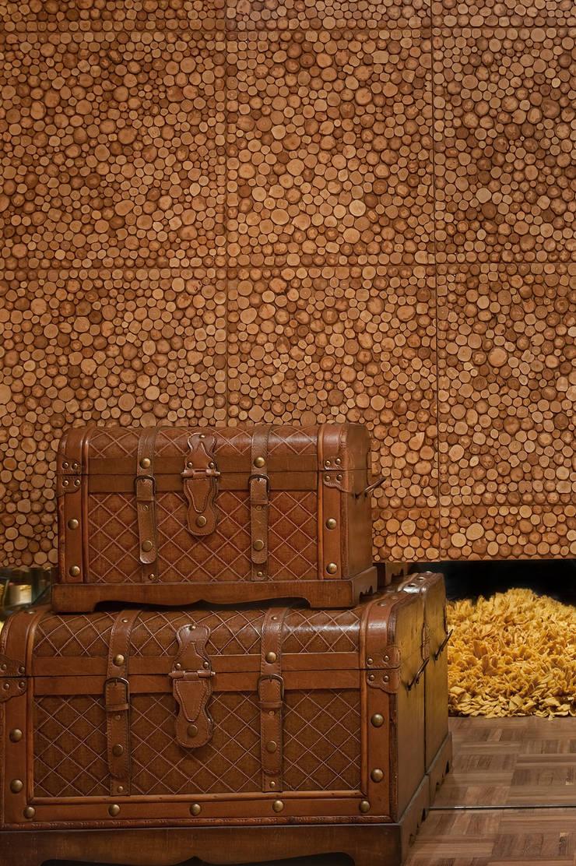 Hall de Entrada: Corredores e halls de entrada  por arquiteta aclaene de mello