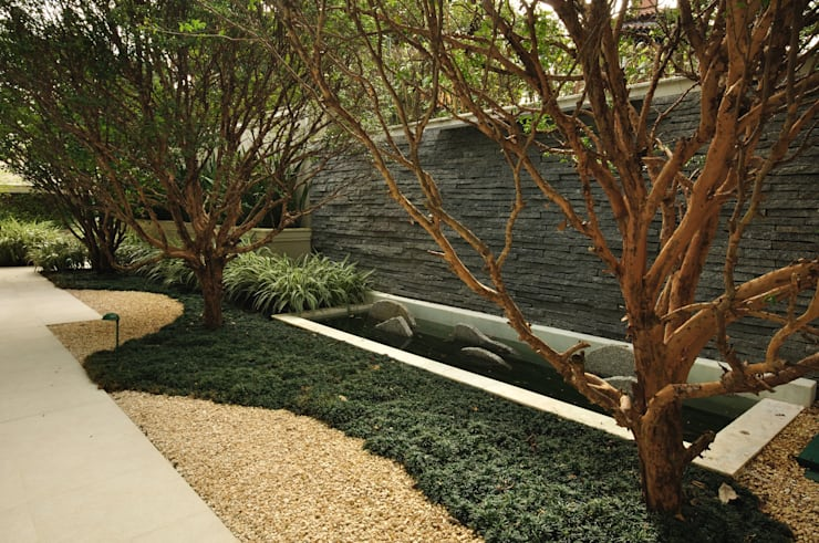 Casa WSC : Jardins tropicais por alexandre galhego paisagismo