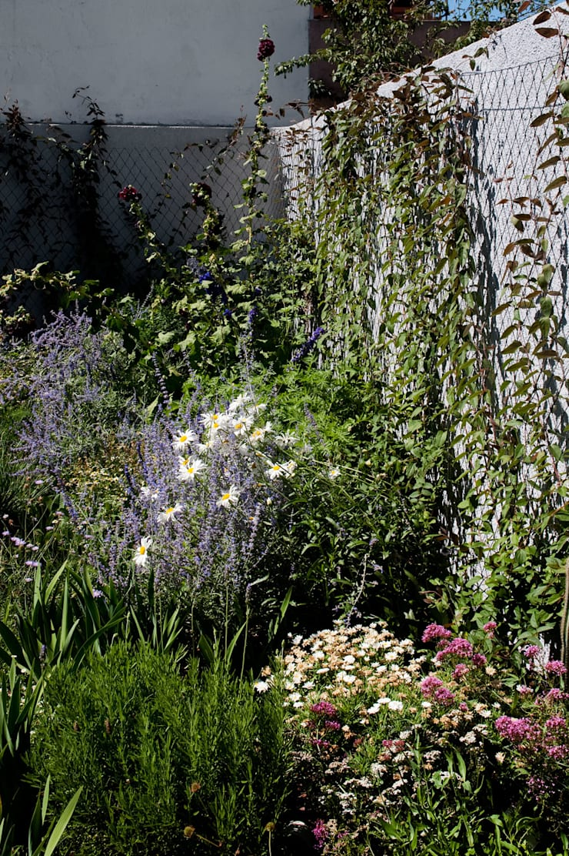 Casa na Ajuda: Jardins  por EXTRASTUDIO