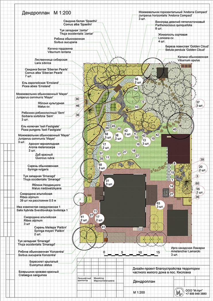 Дандрологический план: Сады в . Автор – Марина Михайлик