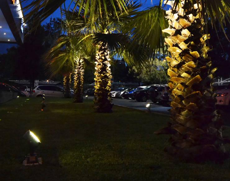 Proyector de Exterior : Jardines de estilo  por Griscan diseño iluminación