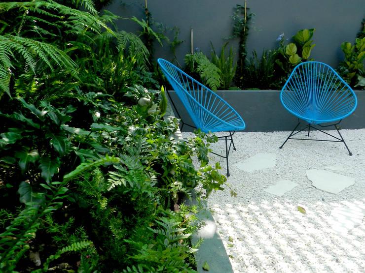 Jardines de estilo moderno de Paisaje Radical
