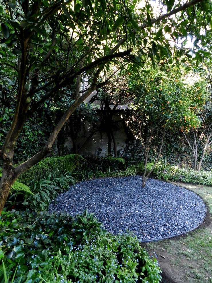 Proyecto PROTASIO TAGLE: Jardines de estilo  por Paisaje Radical