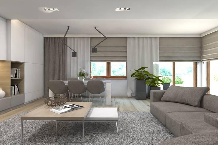 Projekt domu jednorodzinnego 7: styl , w kategorii Salon zaprojektowany przez BAGUA Pracownia Architektury Wnętrz,Nowoczesny