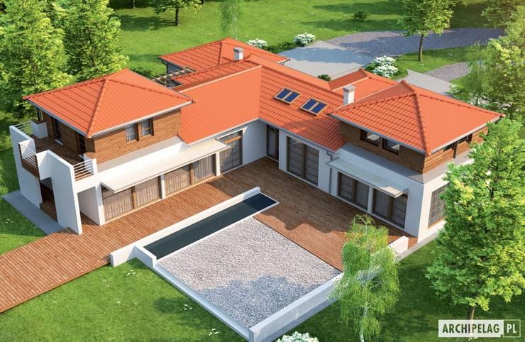 Projekt domu Dionizy (mały) G2 : styl , w kategorii Domy zaprojektowany przez Pracownia Projektowa ARCHIPELAG