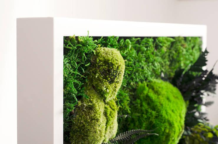 JUNGLE MOSS, MOSS TREND: styl , w kategorii  zaprojektowany przez BandIt Design,Nowoczesny