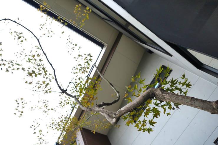 アッタ幡豆の空間 - 写真09: 平山庭店が手掛けた庭です。,
