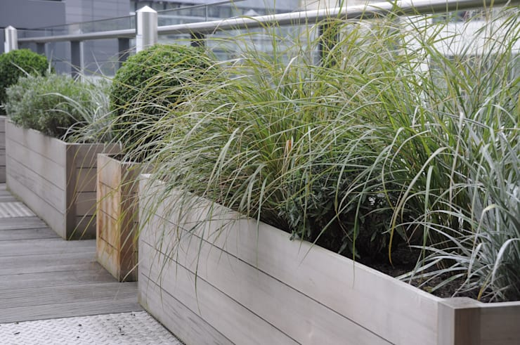 London Roof Terrace:  Garden by Arthur Road Landscapes