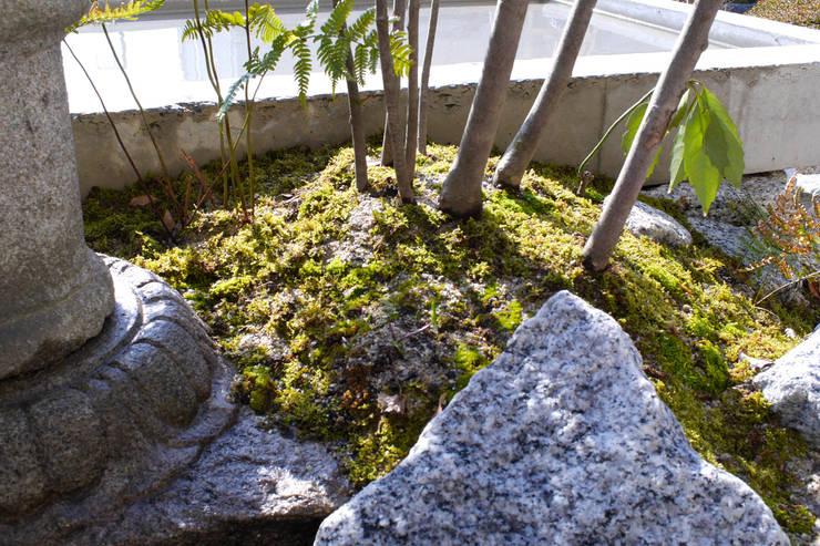 うつくしこむ庭 - 写真04: 平山庭店が手掛けた庭です。