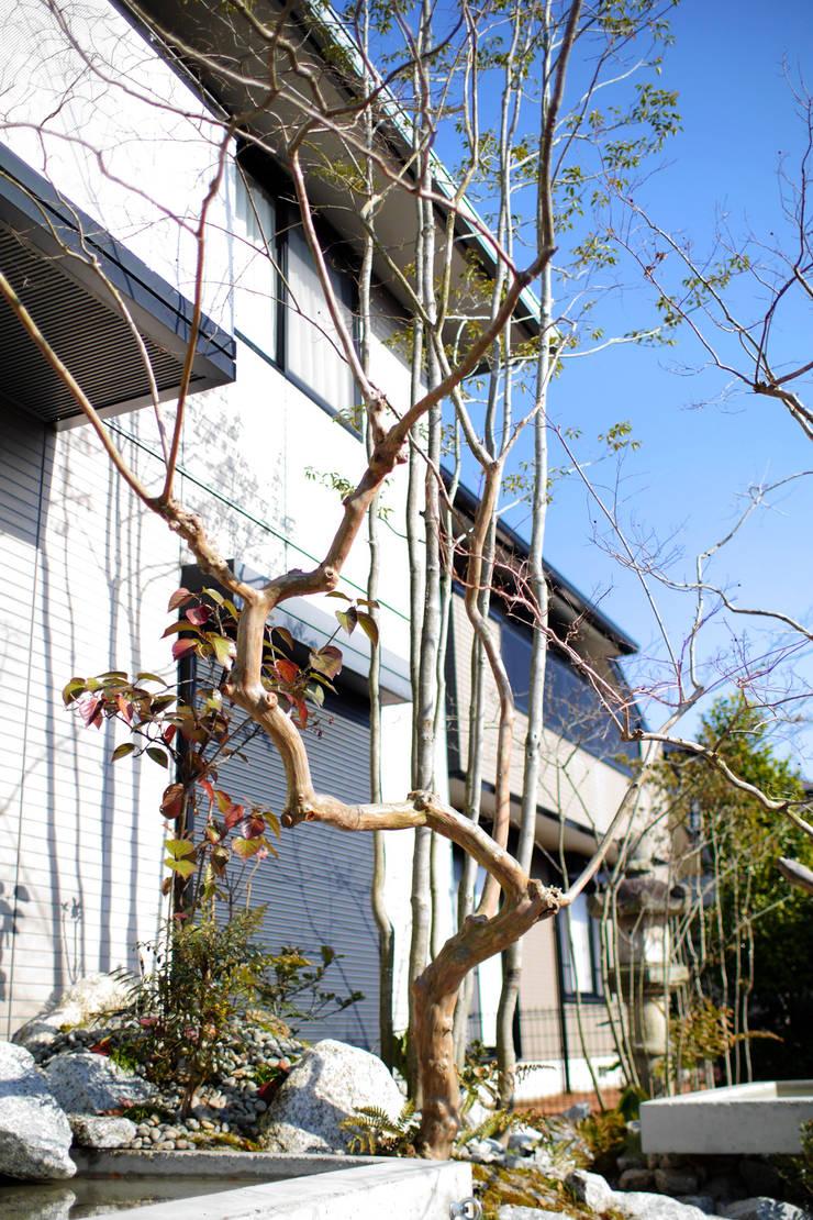 うつくしこむ庭 - 写真06: 平山庭店が手掛けた庭です。