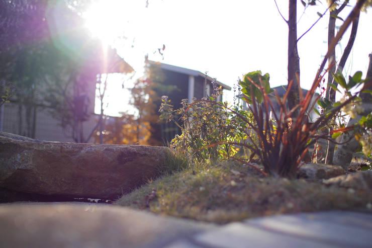 ハウスbetweenデッキの庭 - 写真10: 平山庭店が手掛けた庭です。,