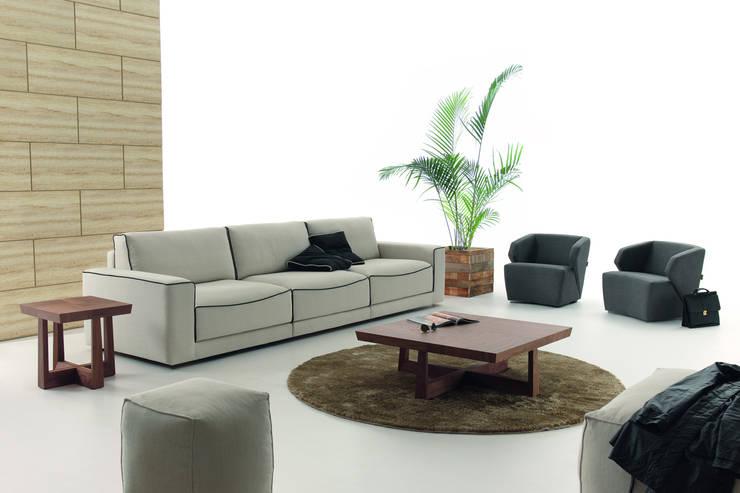 Projekty,  Salon zaprojektowane przez BELTÁ & FRAJUMAR