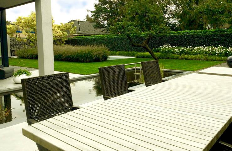 Moderne tuin met vijver en zwembad:  Tuin door Stoop Tuinen