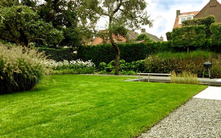 Moderne tuin met vijver en leibomen:  Tuin door Stoop Tuinen