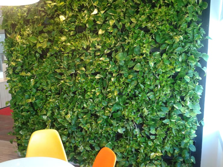 BAXTER – Lock Engenharia: Espaços comerciais  por Wall Plant