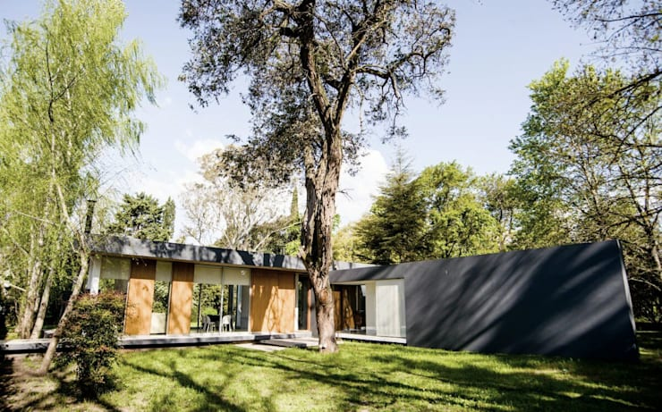Casa AP: Casas de estilo moderno por Felipe Gonzalez Arzac