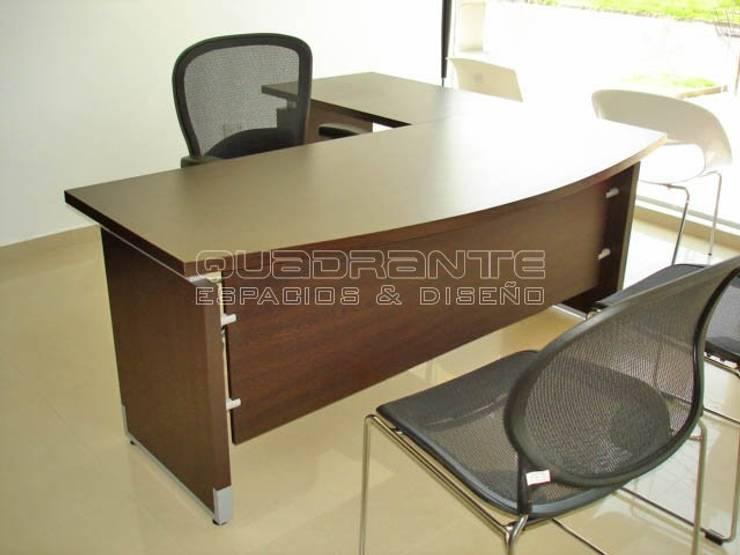 Escritorio presidencial: Oficinas y tiendas de estilo  por Quadrante Espacios y Diseño Ltda