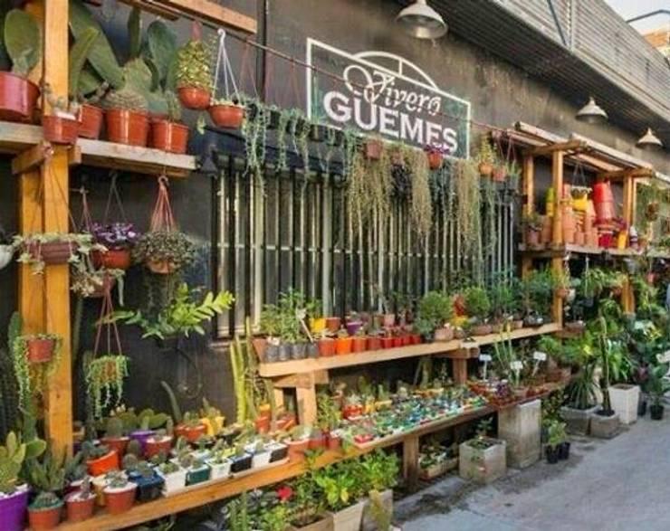 Espaços comerciais  por vivero guemes , Moderno